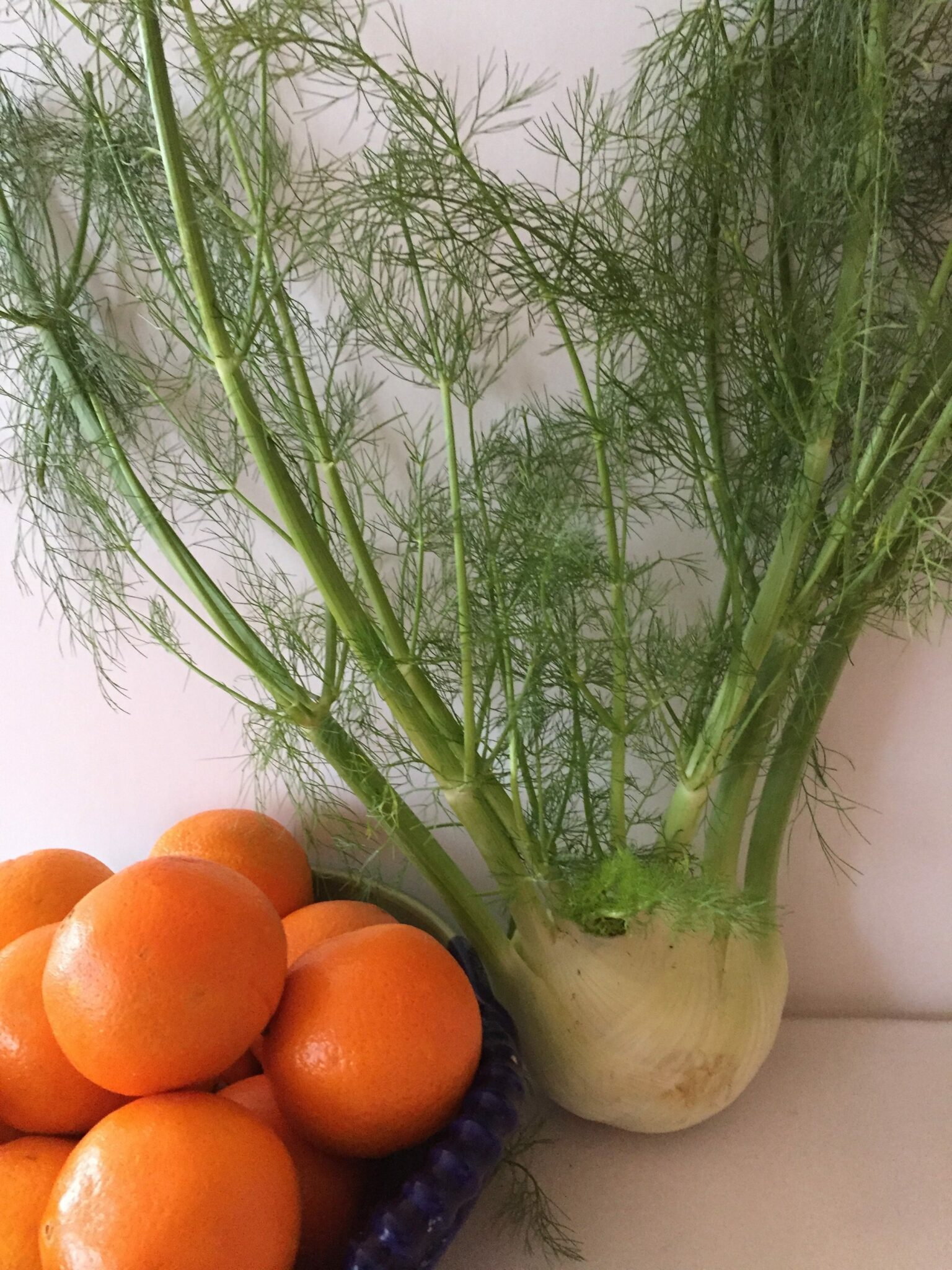 The Fennel Fell In Love With An Orange