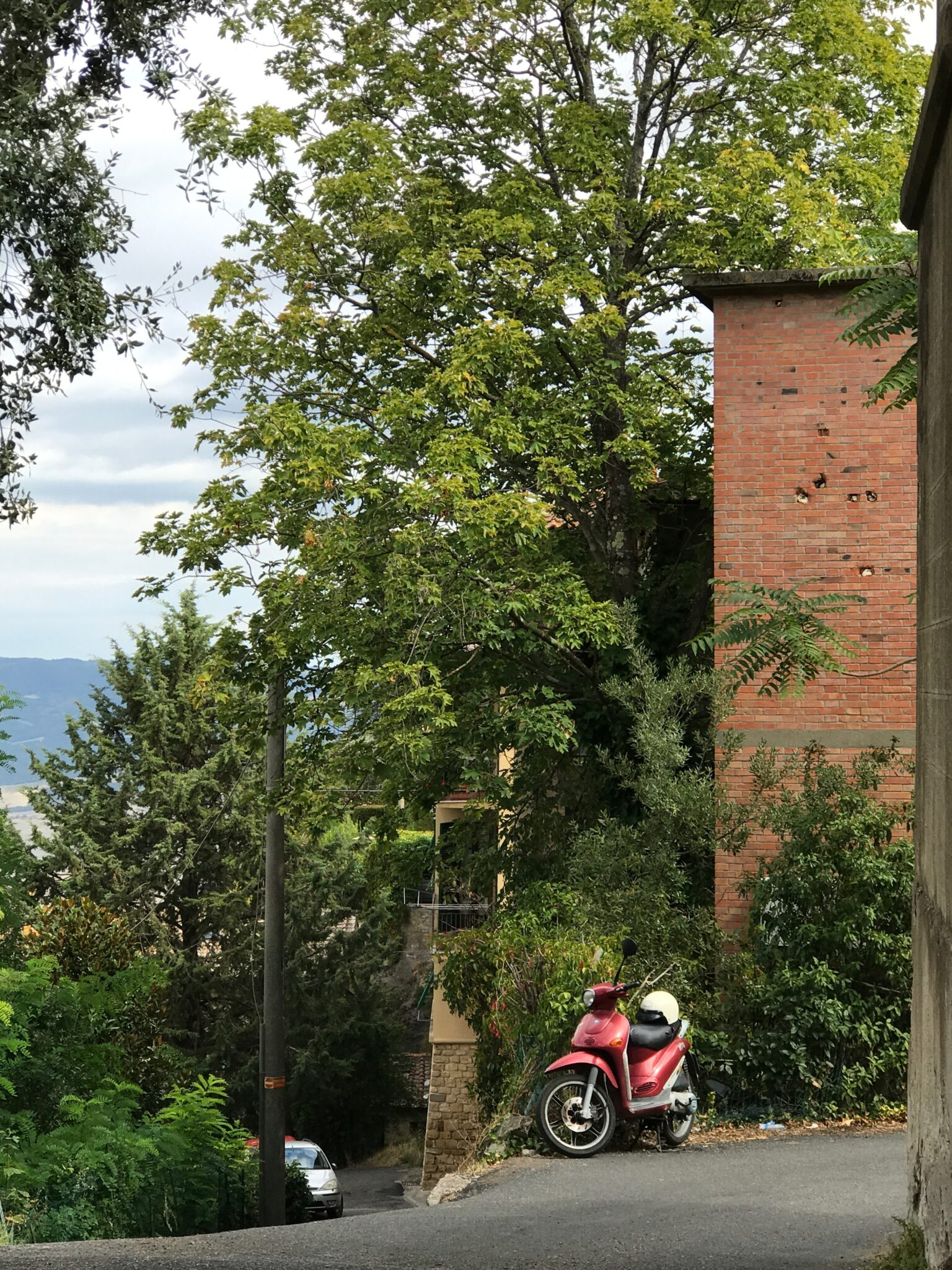 2017 – Volterra Day 3 – Museums & Cooking Class